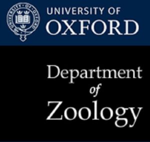 Oxford-Natural Motion Graduate Scholarships in Zoology-featured
