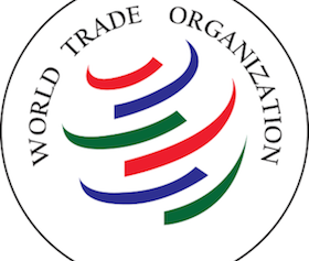 Youth Triumph_Internship at the World Trade Organization 1